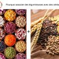 pourquoi associer légumineuses et céréales