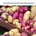 les pommes de terres font-elles grossir ? synergie alimentaire