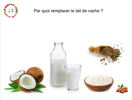 Par quoi remplacer le lait de vache ? - SYNERGIE ALIMENTAIRE