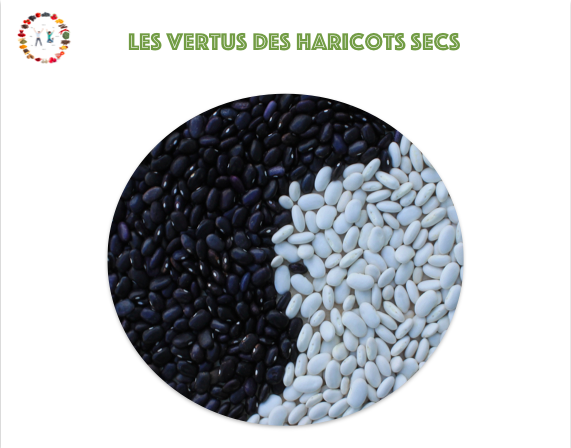 vertus fruits secs