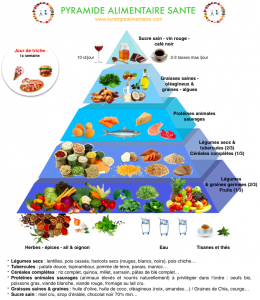 pyramide alimentaire -synergie alimentaire