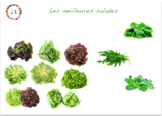 les meilleures salades - synergie alimentaire